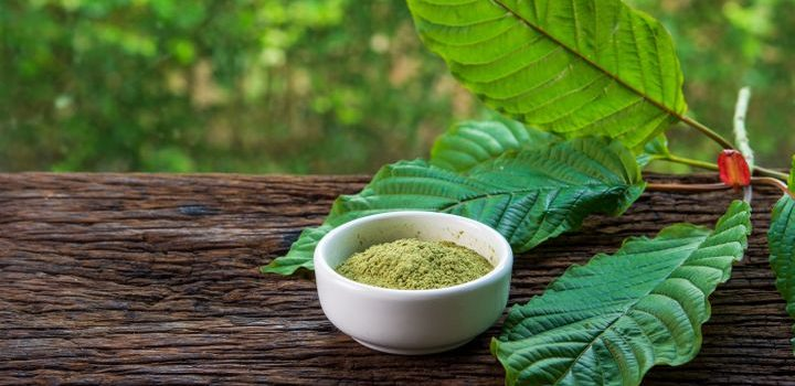 These Details Just May Get You To Alter Your Own Kratom DrugFacts Technique